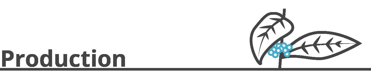 production header image